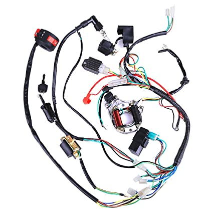 Swell 110Cc Wiring Harness Wiring Diagram Zipur Mohammedshrine Wiring Diagrams Zipurmohammedshrineorg